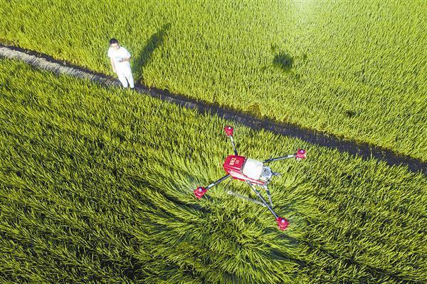 基于智慧农业管理的七大优点